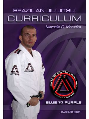 Blue to Purple Belt